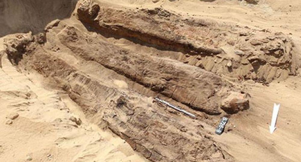 在埃及北部发现放在木棺中的木乃伊