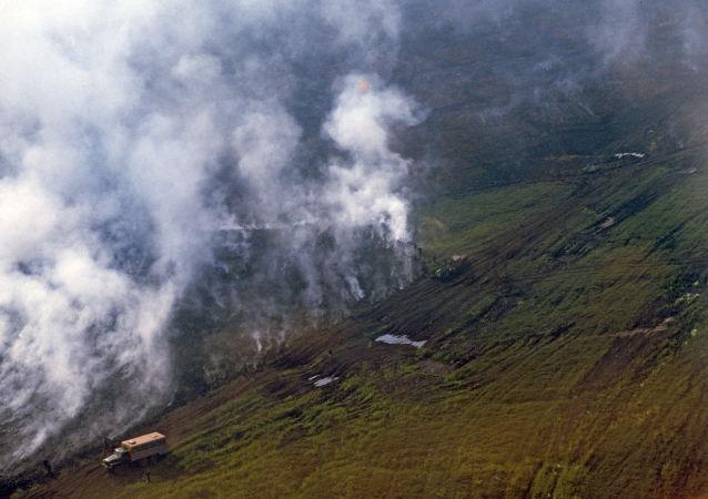 媒体:北极火灾导致有害气体排放规模打破记录