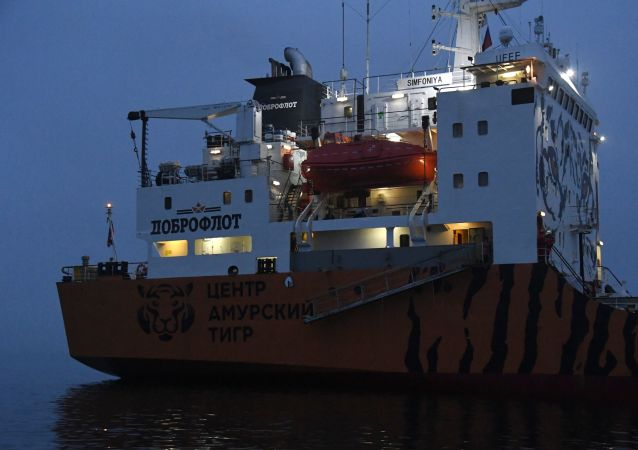 俄Dobroflot集团公司的冷藏运输船