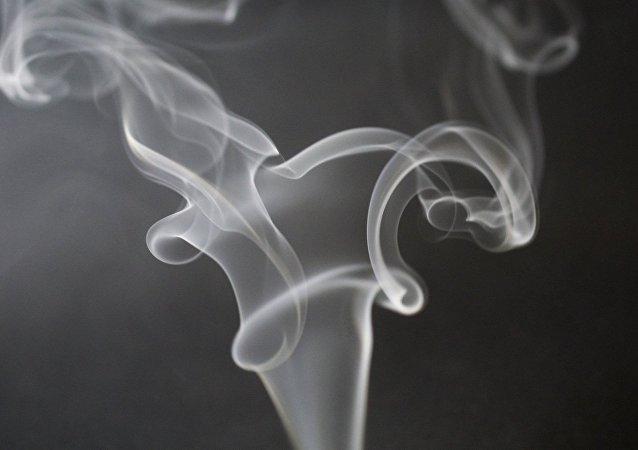 媒体:蔡英文安保人员夹带9800条香烟桃园机场被查,创最高纪录