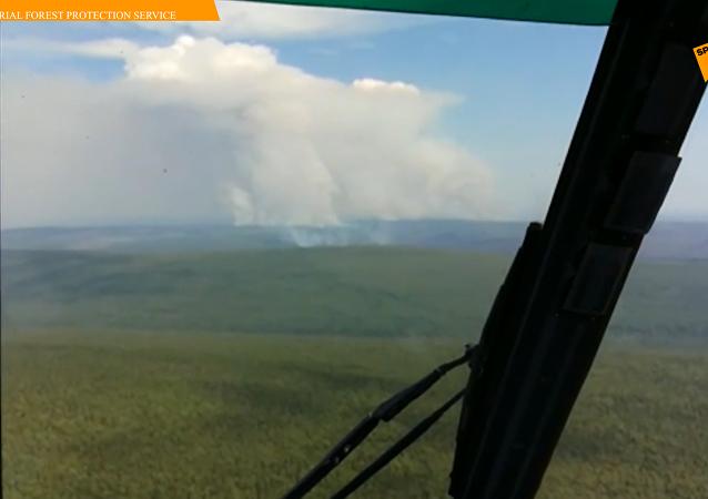 俄西伯利亚160多万公顷森林起火