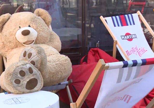 巴黎泰迪熊从冬眠中苏醒