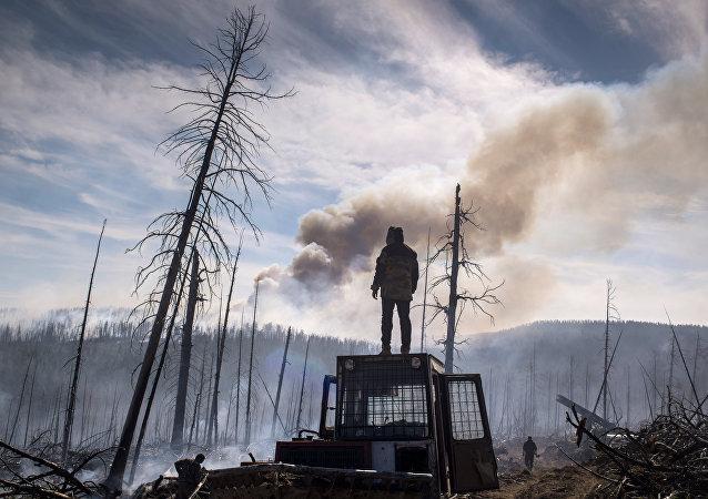 俄罗斯军用无人机开始对西伯利亚林火进行监控