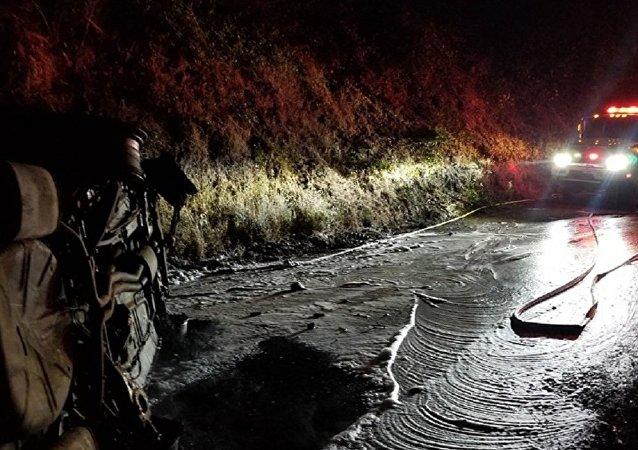美国一头熊从悬崖上掉下来落到警车上