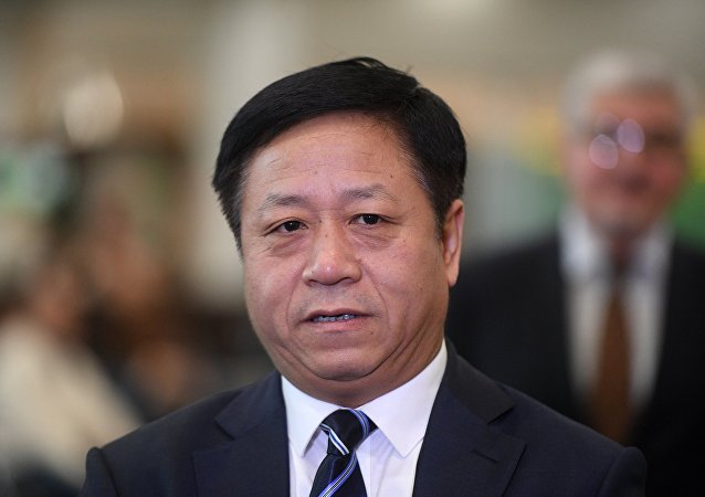 中国驻俄大使张汉晖
