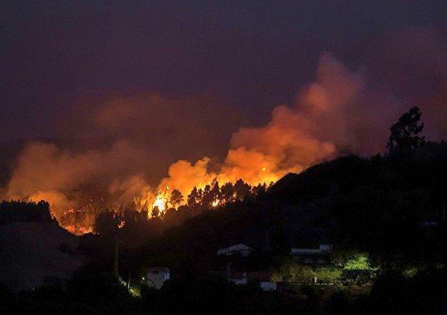 西班牙大加那利岛森林火灾