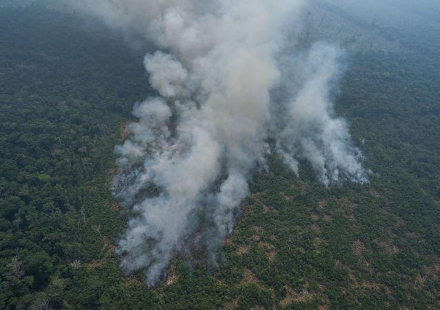 Пожары в бразильской Амазонии