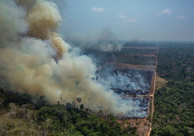 森林山火(资料图片)