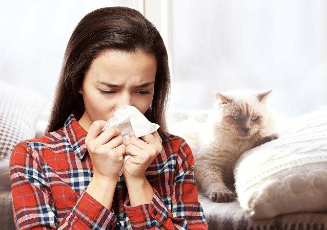 科学家阐释为何猫让很多人过敏