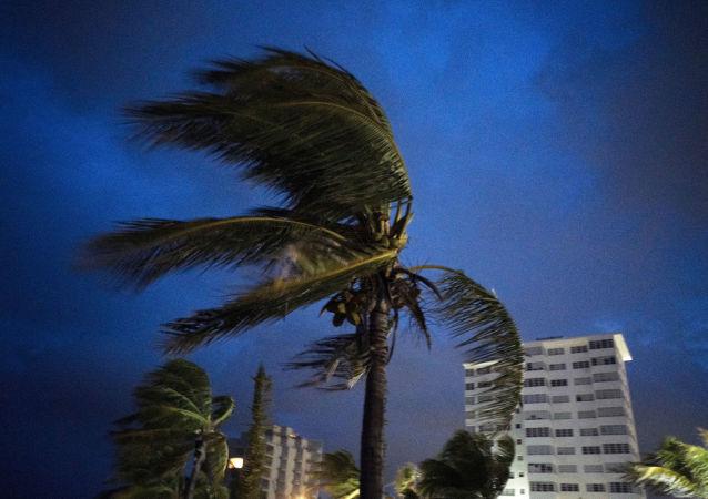 """""""多里安""""飓风在巴哈马造成死亡人数升至七人"""