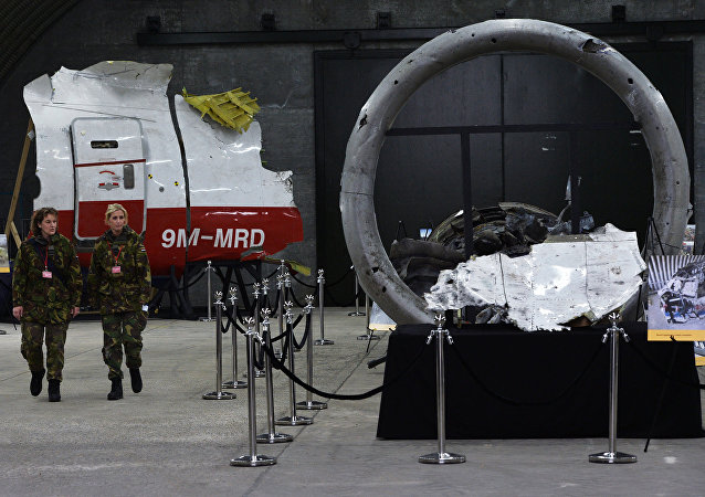 荷兰法院为审理MH17失事案提前一年预定场地