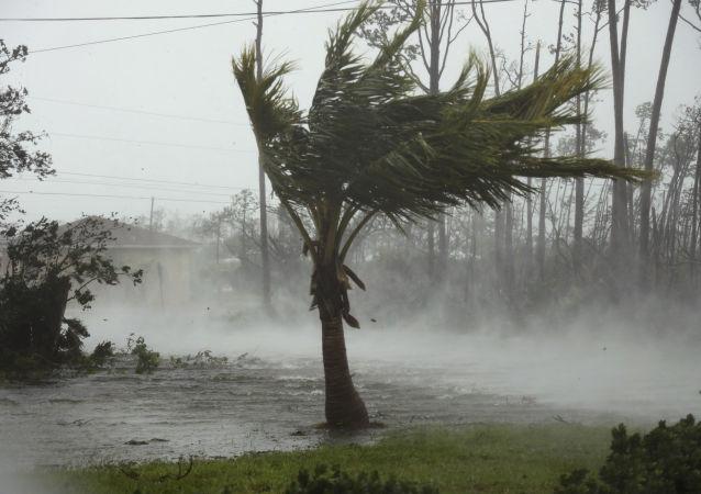 美国准备向巴哈马群岛飓风灾民发放签证