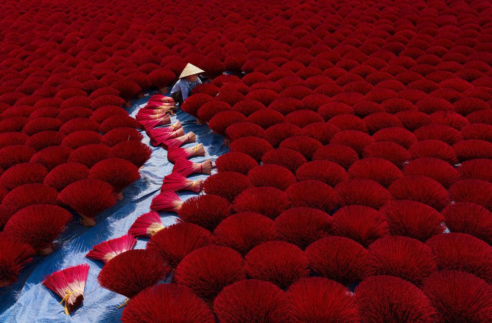 收集乳香。作者:Khánh Phan(越南)。