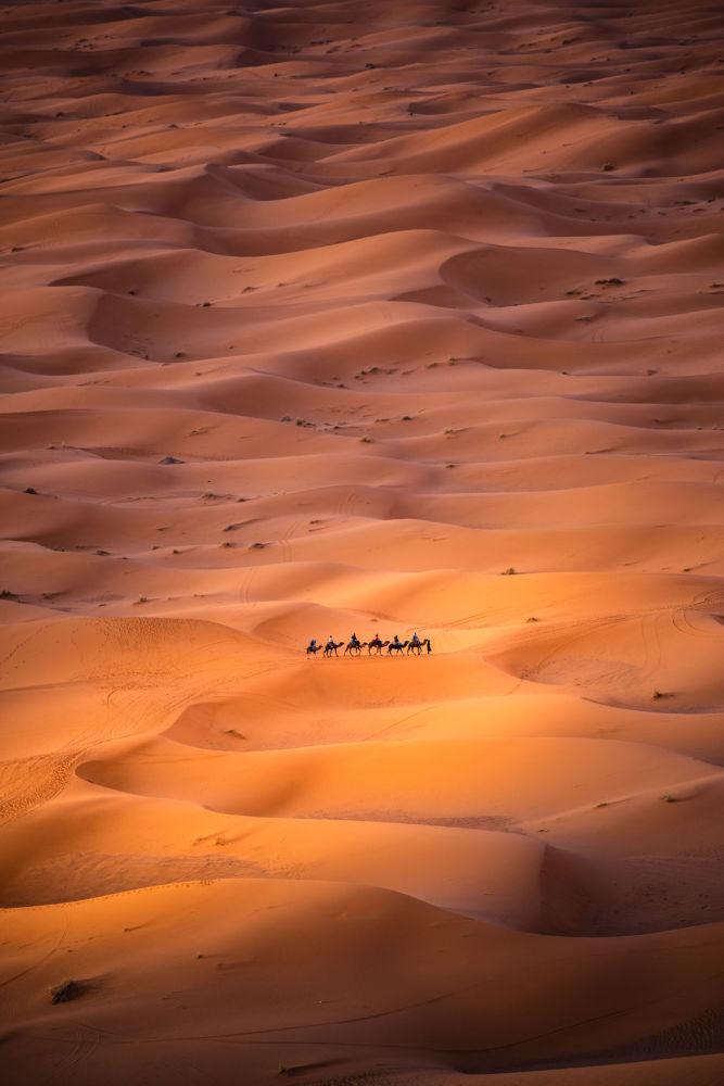 撒哈拉沙漠中的游牧民族。作者:Carles Alonso(西班牙)。
