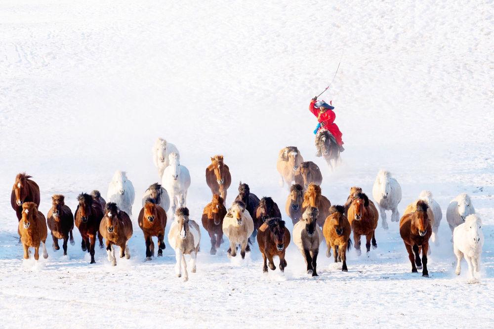 蒙古之冬。作者:Zay Yar Lin(缅甸)
