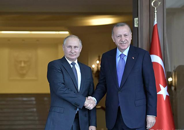 克宫:普京和埃尔多安并未讨论伊德利卜袭击事件