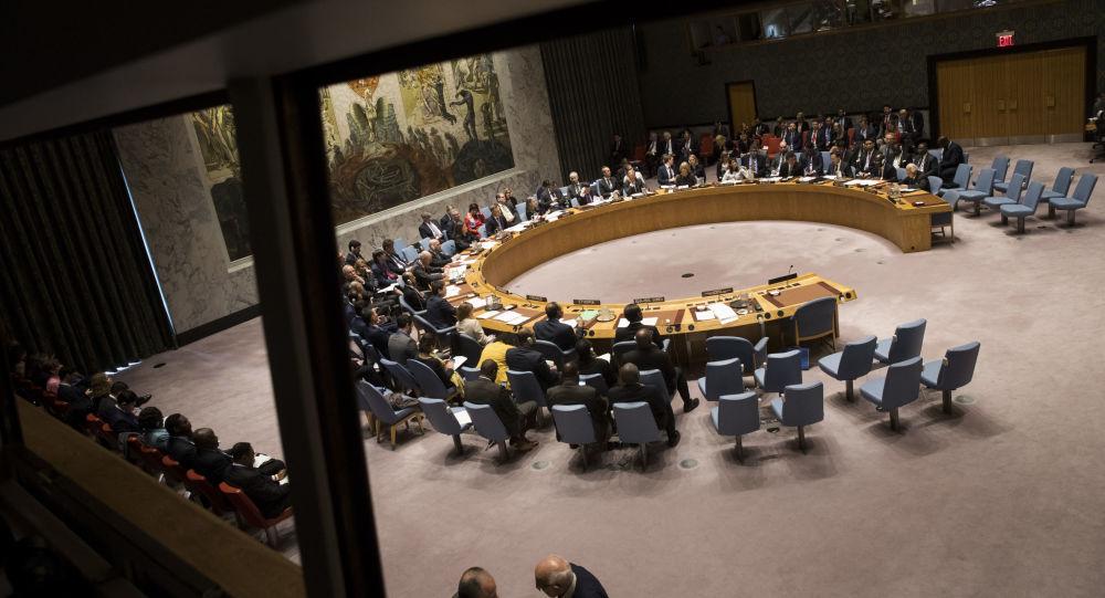 俄中投票反对比利时等国提出的伊德利卜决议草案