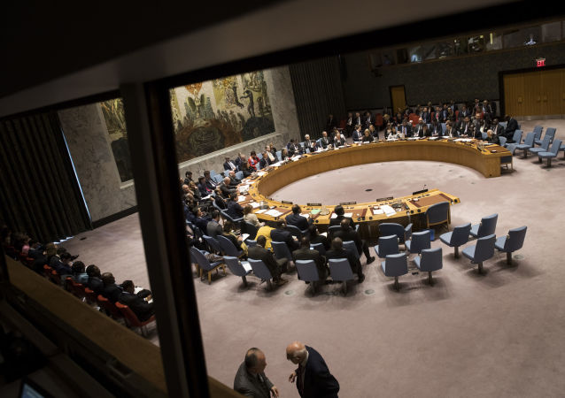 德外长:安理会的工作因美俄中合作有限而困难重重
