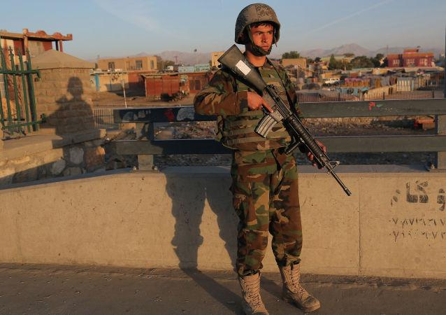 阿富汗国防部:阿安全部队清剿加兹尼省塔利班分子