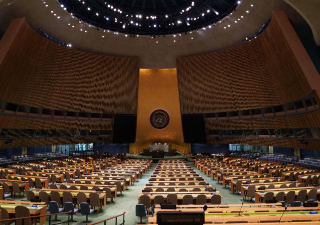 俄议员:美方拒绝向俄代表团发放签证违背联合国原则