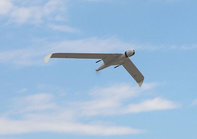 """俄卡拉什尼科夫无人机将在""""豹之乡"""" 国家公园进行测试"""