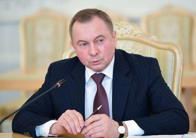 Министр иностранных дел Белоруссии Владимир Макей во время встречи в Москве с министром иностранных дел России Сергеем Лавровым