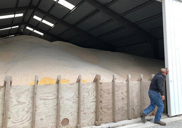 中国农业农村部副部长:增加自美农产品进口不会对中国国内农业产生冲击