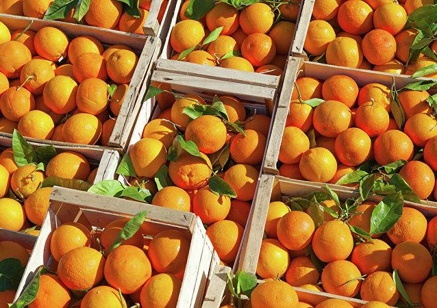 俄联邦动植物卫生监督局1月6日起暂时限制从中国进口柑橘类水果