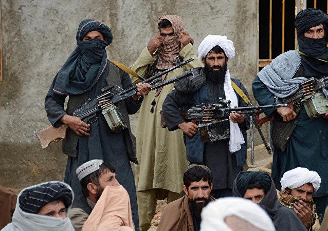 外媒:塔利班袭击造成至少七名阿富汗军人丧生