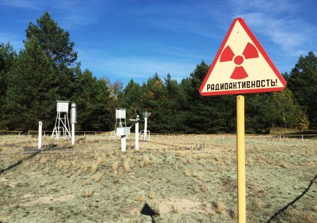 在切尔诺贝利核电站禁区内
