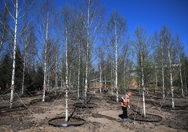 中国铁建可能将参加莫斯科新区公园的项目