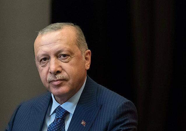 土耳其总统拟与普京讨论履行俄土有关叙问题备忘录事宜