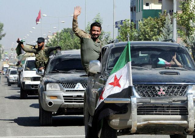 叙政府军抵达艾因角东北方的叙土边界