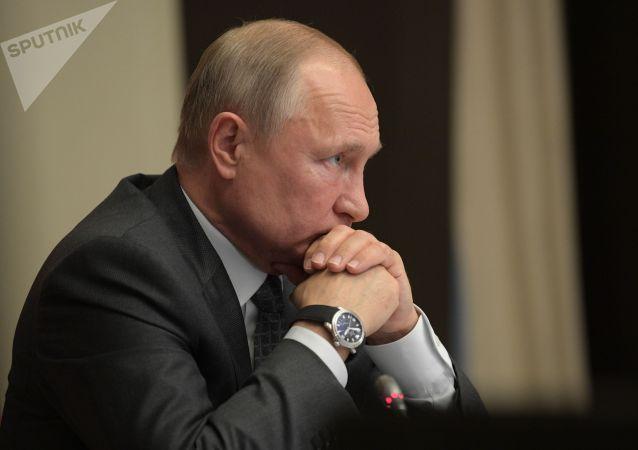 普京将在索契会见多个非洲国家领导人