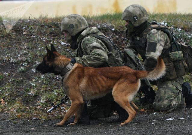 俄总检察院报告指出,2019年俄罗斯成功阻止境内43起恐袭事件的发生,恐怖威胁等级依然很高