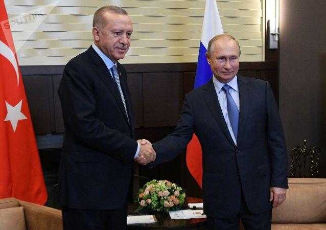 俄土两国总统在柏林举行会谈