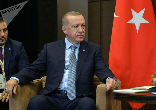 土耳其总统:将在美国制裁时实施反制裁