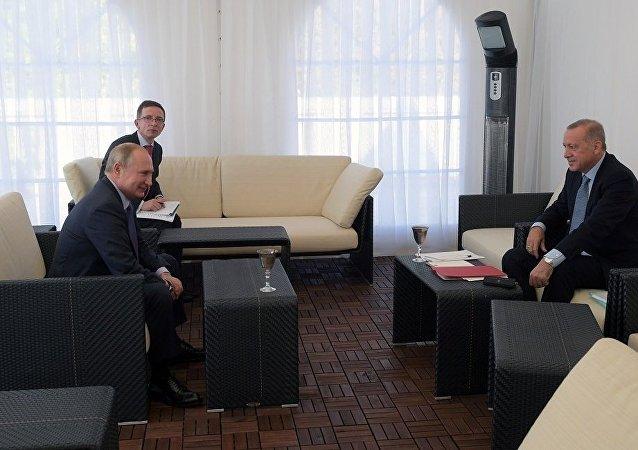 俄总统新闻秘书:普京与埃尔多安就叙利亚问题调解备忘录