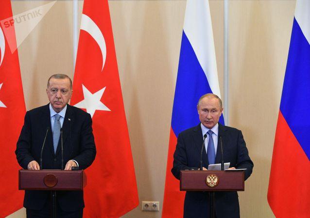 埃尔多安和普京讨论叙利亚伊德利卜局势