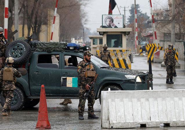 塔利班在阿富汗加兹尼省杀死九名士兵