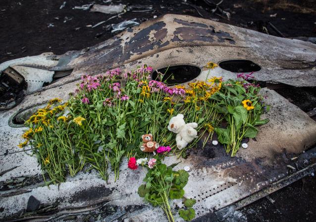 律师:德国私家侦探瑞希收回移交马航MH17空难证据的提议