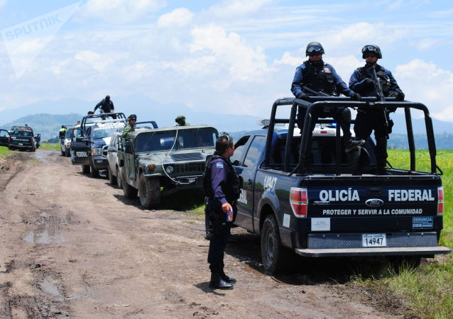 墨西哥警察和军队