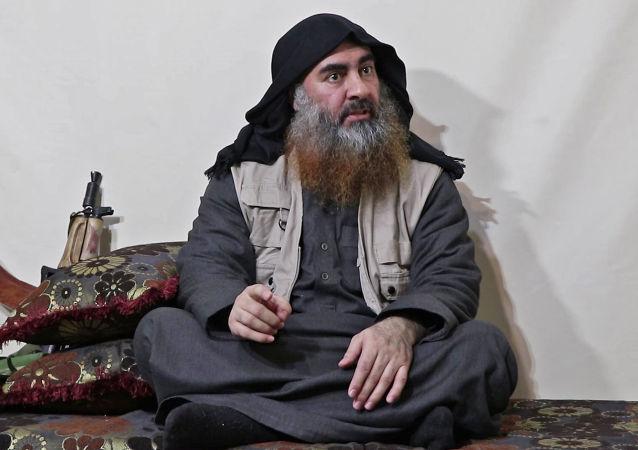 """""""伊斯兰国""""领导人阿布·巴克尔·巴格达迪"""