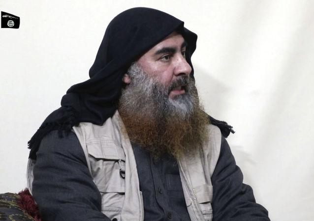 土耳其拘留的巴格达迪亲属人数已达两位数
