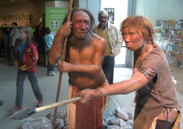 尼安德特人博物馆,德国梅特曼市