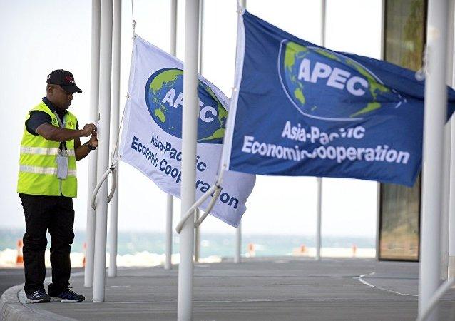 中国商务部副部长:APEC经济体应加强合作携手抗疫复苏经济