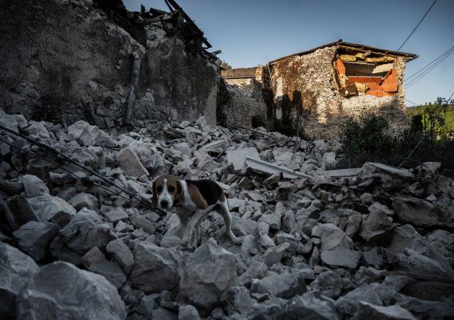 6.0级地震
