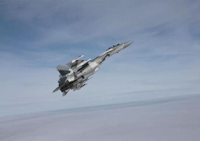 美国国务院:华盛顿正在与开罗合作以防埃及购买俄苏-35战机