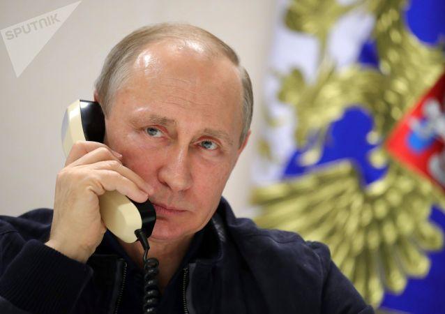 克宫:普京与卢卡申科通电话讨论能源合作