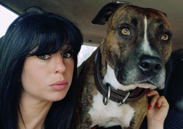 法国的一群狗咬死了孕妇